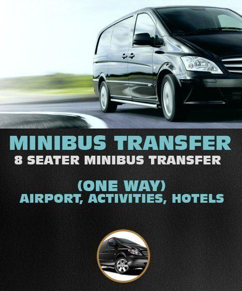 Mini Bus Transfer (one way) Riga Airport, Hotel, Activity